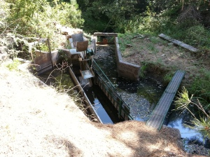 Our fishscreen and bypass, to prevent fish from going down our irrigation ditch.