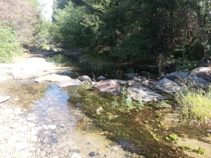 The creek will likely be dry in another two to three weeks.